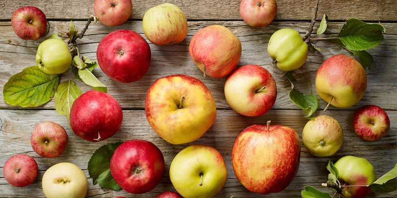 تاثیر سیب در لاغری