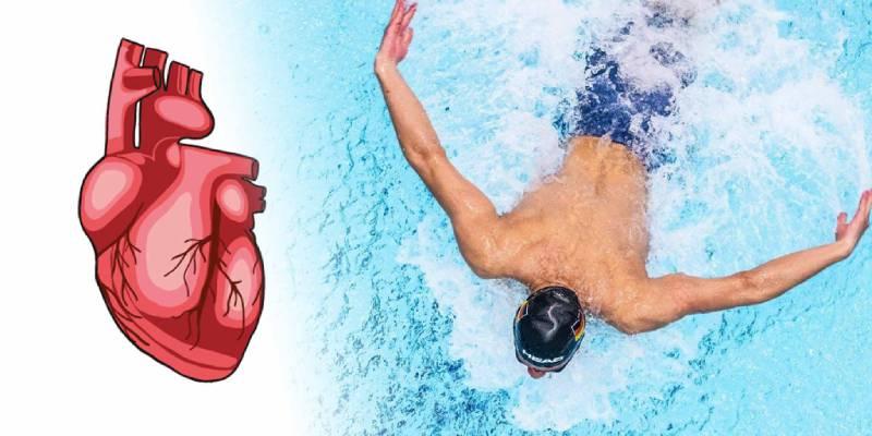 تقویت قلب و عروق با شنا