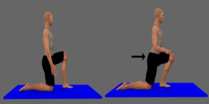 حرکت عضله خم کننده