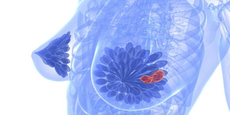 عملکرد-دستگاه-آنالایزر-مغناطیسی-رزونانس-کوانتومی