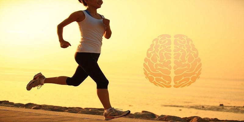 کاهش-خون-رسانی-به-مغز-با-ترک-ورزش