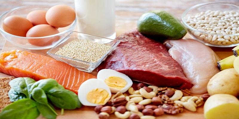 افزایش-وزن-پروتئین