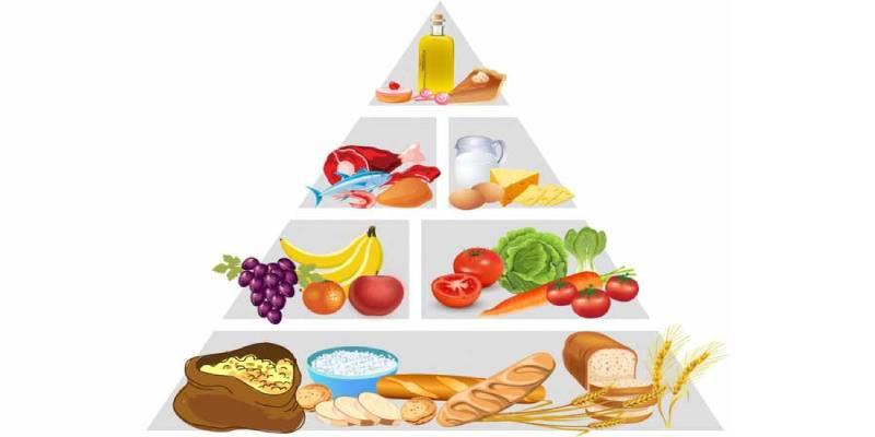 ما-روزانه-به-چه-مقدار-کالری-احتیاج-داریم؟